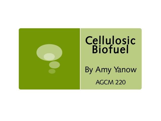 Cellulosic Biofuel By Amy Yanow AGCM 220