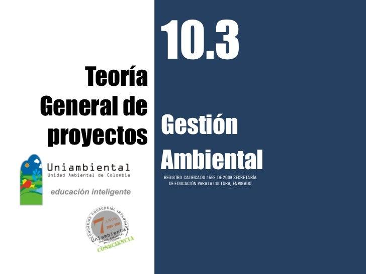 10.3    TeoríaGeneral de proyectos Gestión           Ambiental           REGISTRO CALIFICADO 1568 DE 2009 SECRETARÍA      ...