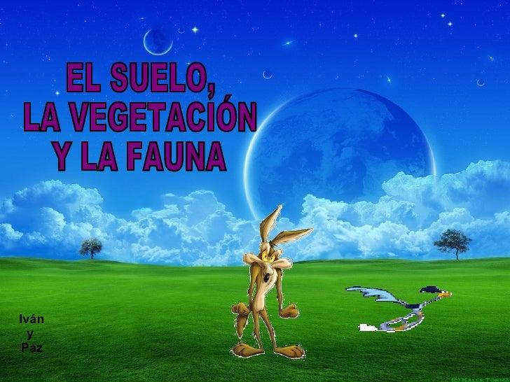 10. El Suelo, La VegetacióN Y La Fauna