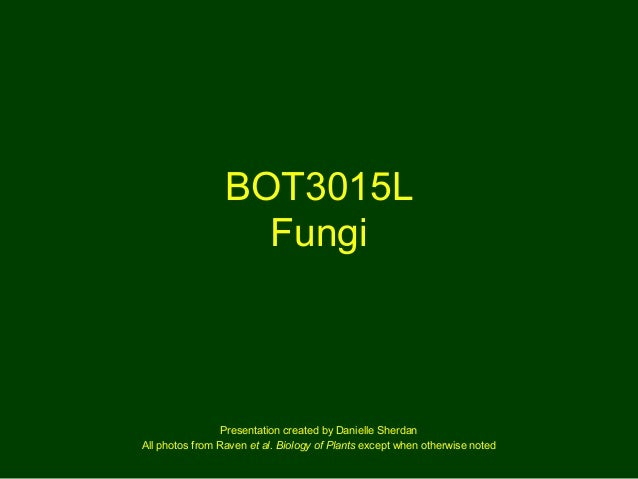 BOT3015L Fungi Presentation created by Danielle Sherdan All photos from Raven et al. Biology of Plants except when otherwi...
