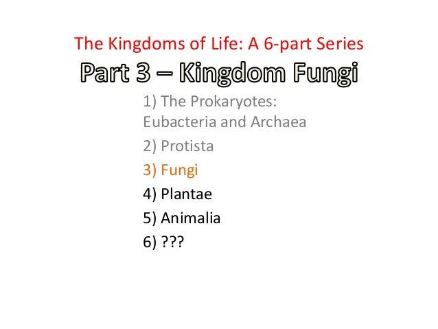 1) The Prokaryotes: Eubacteria and Archaea 2) Protista 3) Fungi 4) Plantae 5) Animalia 6) ??? The Kingdoms of Life: A 6-pa...