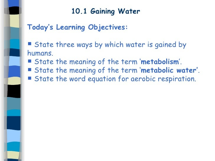 10.1 Gaining Water Today's Learning Objectives:  State three ways by which water is gained by humans.  State the meaning...