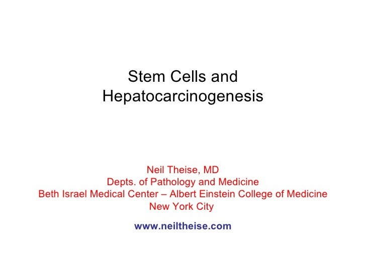 Stem Cells and Hepatocarcinogenesis Neil Theise, MD Depts. of Pathology and Medicine Beth Israel Medical Center – Albert E...