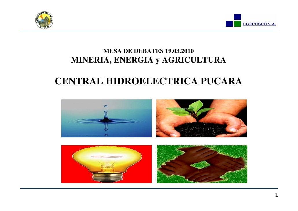 MESA DE DEBATES 19.03.2010   MINERIA, ENERGIA y AGRICULTURA  CENTRAL HIDROELECTRICA PUCARA                                ...