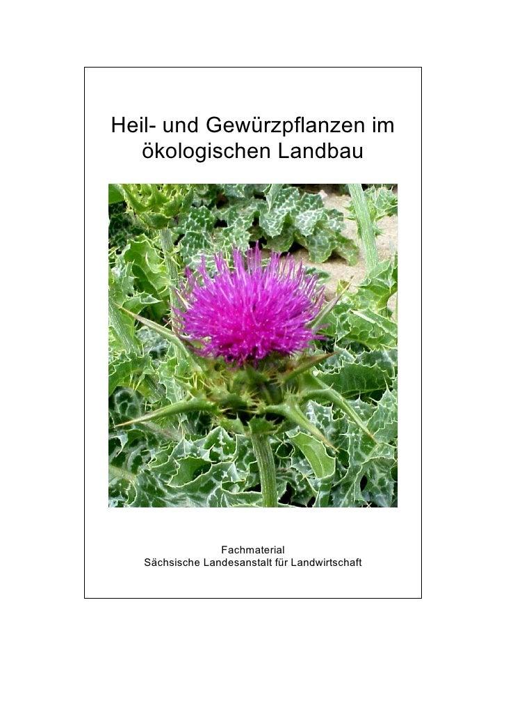 1007 1 PAM AB saxno estate estudo alemão