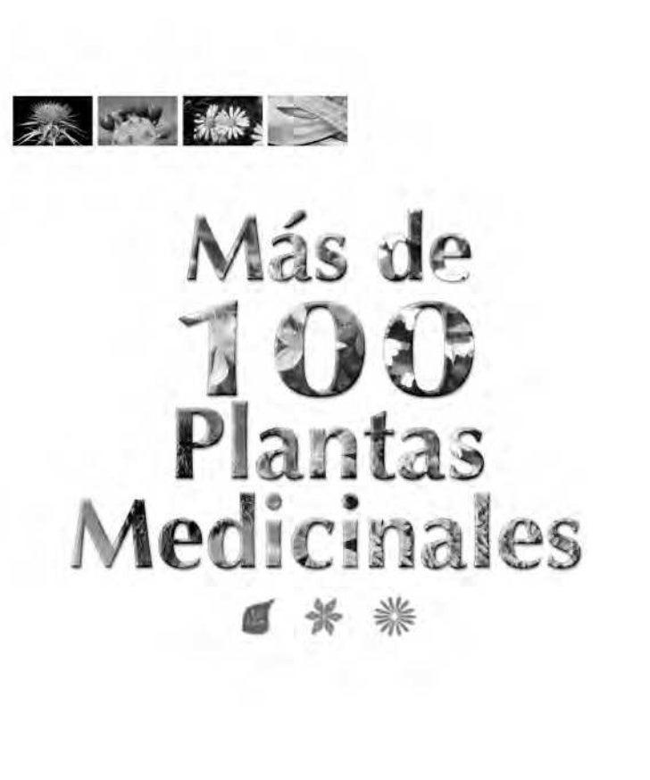 100plantas medicinales canarias