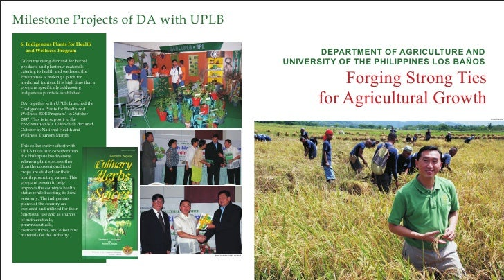 Milestone Projects of DA with UPLB  6. Indigenous Plants for Health     and Wellness Program                              ...
