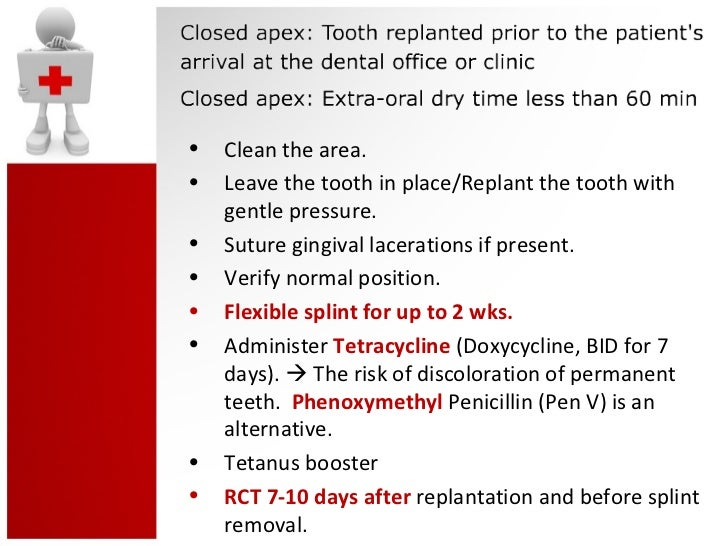review of storage media before tooth replantation Guidelines for the management of traumatic dental injuries ii avulsion of the tooth has been kept in special storage media after replantation and before.