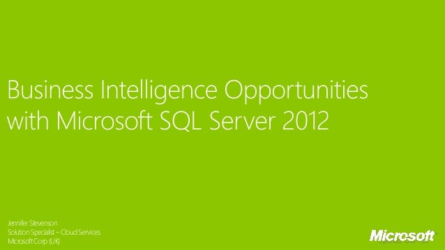 101 Microsoft Partner Series: Business Intelligence