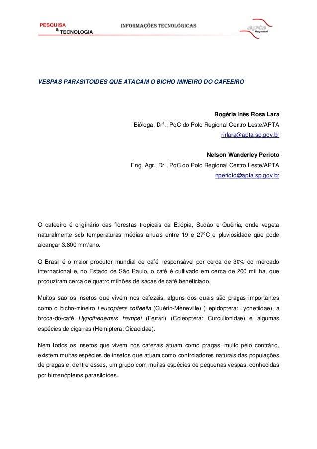 VESPAS PARASITOIDES QUE ATACAM O BICHO MINEIRO DO CAFEEIRO Rogéria Inês Rosa Lara Bióloga, Drª., PqC do Polo Regional Cent...