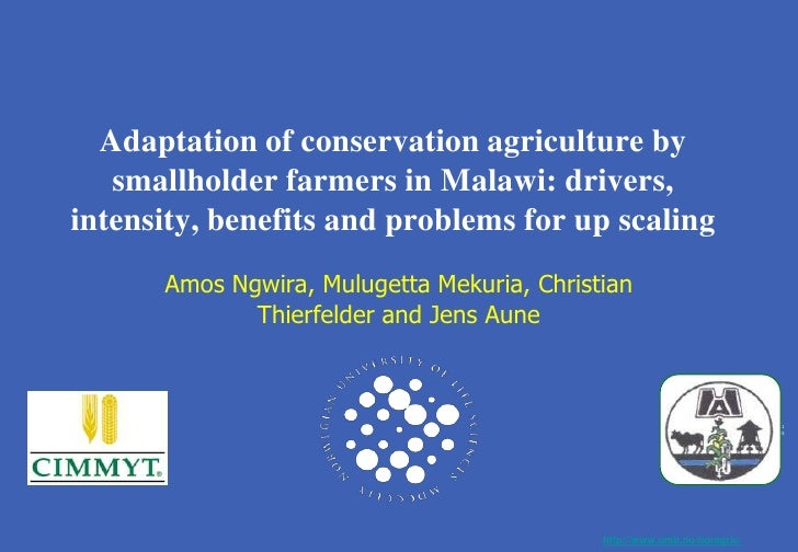 Adaptation of CA by smallholder farmers in Malawi: drivers, intensity, benefits and problems for scaling up. Amos Robert Ngwira