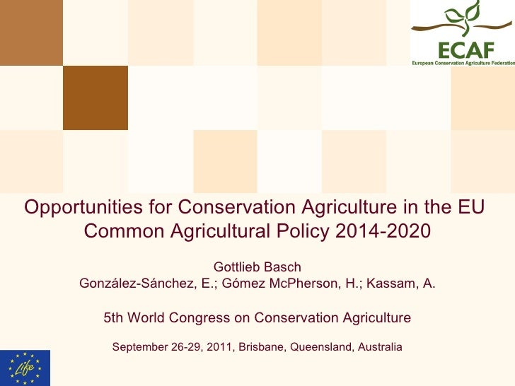 Opportunities for CA in the EU Common Agricultural Policy 2014 - 2020. Gottlieb Basch