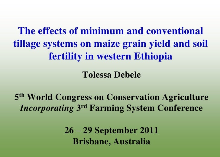 The effects of minimum and conventional tillage systems on maize grain yield and soil fertility in western Ethiopia. Tolessa Debele Dilalessa