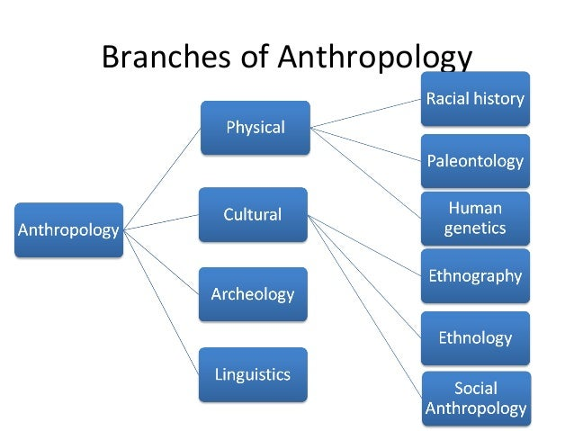 anthropology and its branches Each of these subfields also have many branches within their scopes there's a common misconception among many that anthropology only focuses on studying fossils and bones at least from my experience this seems to be the case although not completely off, that's only a small part of what is studied.