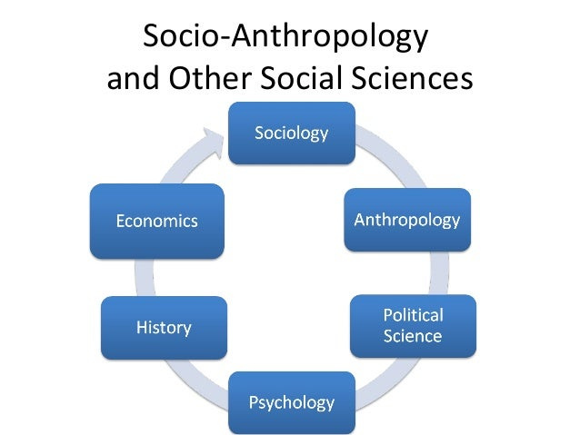 what do socio cultural anthropologists study the relationship
