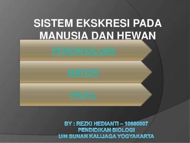 sistem eksresi