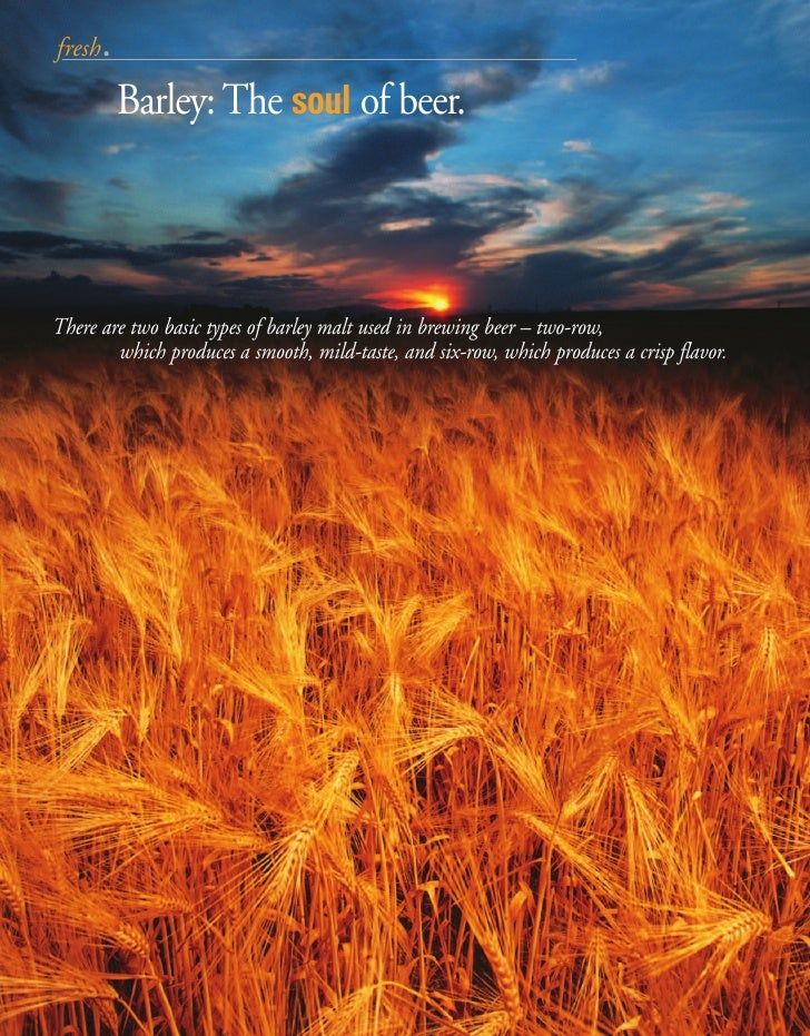 fresh.           Barley: The soul of beer.    There are two basic types of barley malt used in brewing beer – two-row,    ...