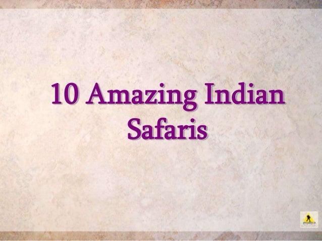 10 Amazing Indian Safaris