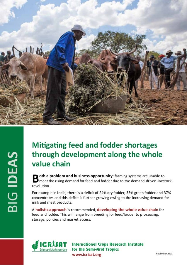 BIG IDEAS  Mitigating feed and fodder shortages through development along the whole value chain  B  oth a problem and busi...