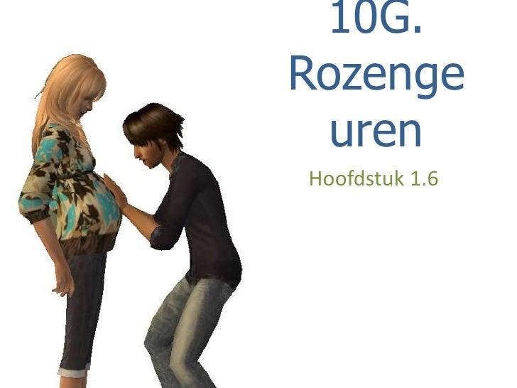 10G Rozengeuren 1.6