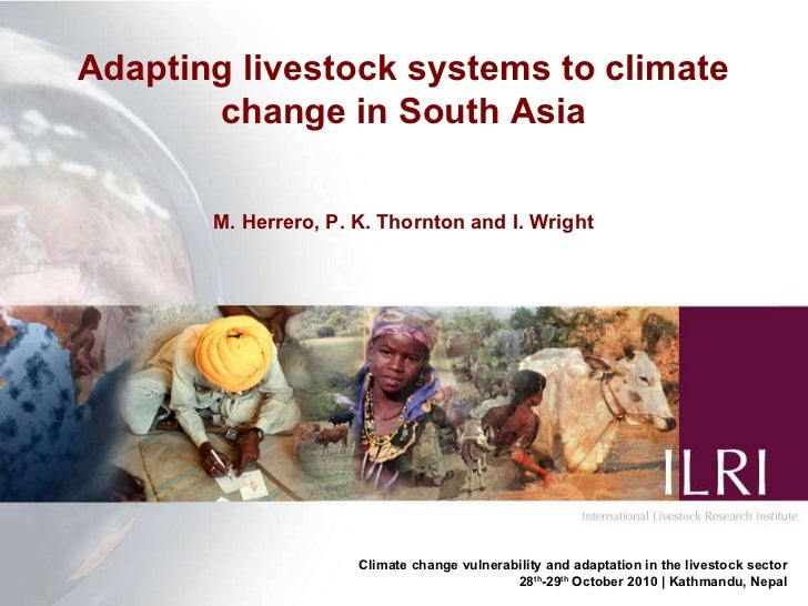Adapting livestock systems to climate change in South Asia M. Herrero, P. K. Thornton and I. Wright Climate change vulnera...