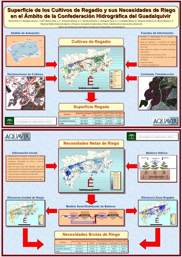 Superficie de los Cultivos de Regadío y sus Necesidades de Riego en el Ámbito de la Confederación Hidrográfica del Guadalq...