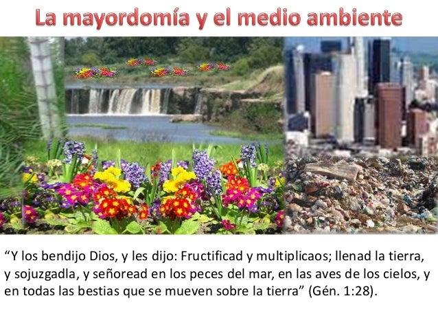 """""""Y los bendijo Dios, y les dijo: Fructificad y multiplicaos; llenad la tierra,y sojuzgadla, y señoread en los peces del ma..."""