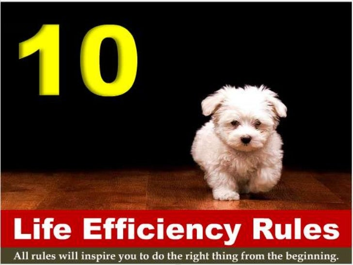 10 Life Efficiency Rules