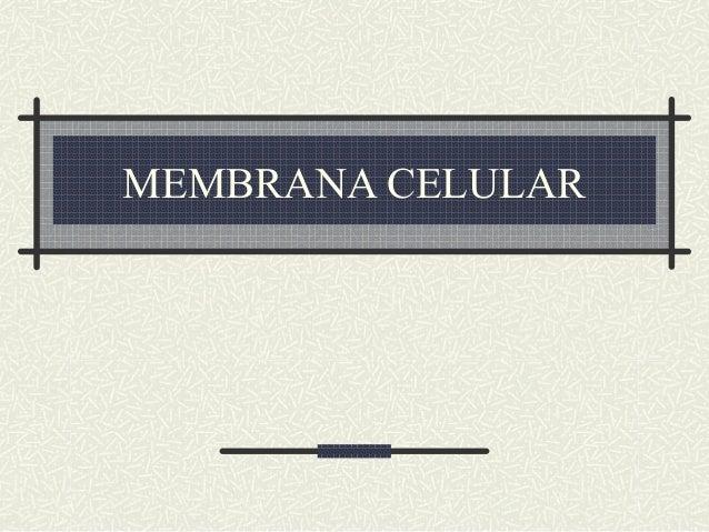 Biología - Membrana Celular