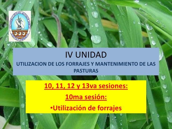 IV UNIDADUTILIZACION DE LOS FORRAJES Y MANTENIMIENTO DE LAS                     PASTURAS          10, 11, 12 y 13va sesion...
