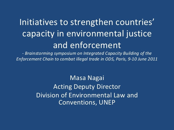 Initiatives to strengthen countries' capacity in environmental justice and enforcement - Brainstorming symposium on Integr...