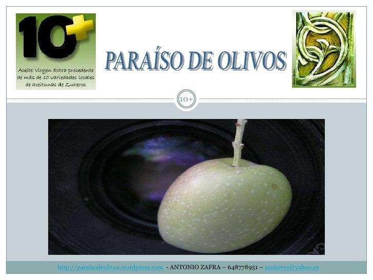 http://paraisodeolivos.wordpress.com  - ANTONIO ZAFRA – 648778951 – azuheros@yahoo.es<br />10+<br />PARAÍSO DE OLIVOS<br />