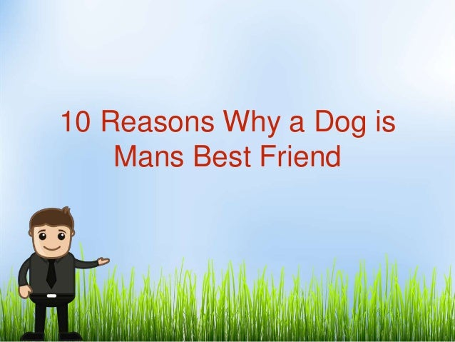 essay about mans best friend Dogs have an extraordinary effect on many aspects of the human condition, offering physical, emotional, and social benefits for this reason, they deserve the well-deserved title of man's best friend.