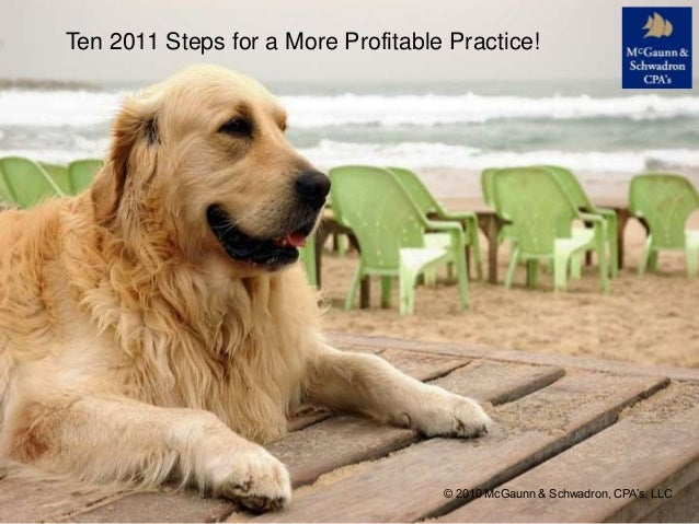 Ten 2011 Steps for a More Profitable Practice! © 2010 McGaunn & Schwadron, CPA's, LLC