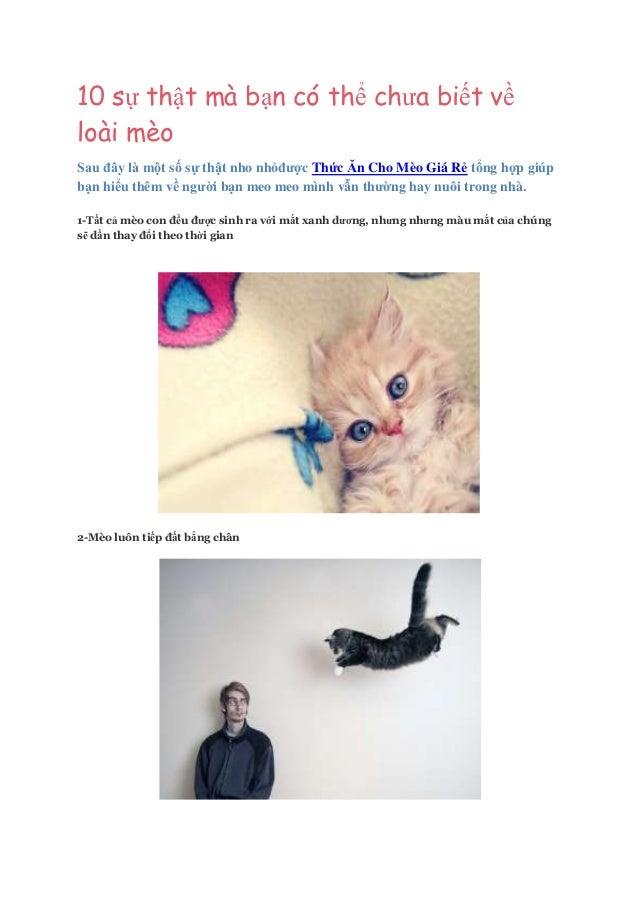 10 sự thật mà bạn có thể chưa biết về loài mèo Sau đây là một số sự thật nho nhỏđược Thức Ăn Cho Mèo Giá Rẻ tổng hợp giúp ...