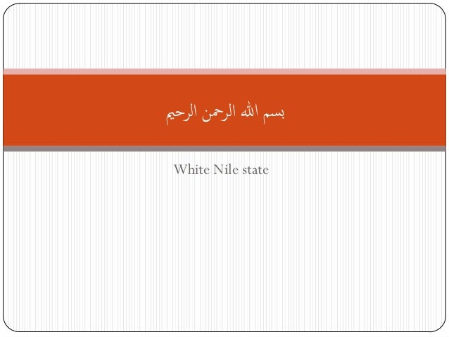 [e-Government Program City Paper : White Nile, Sudan]