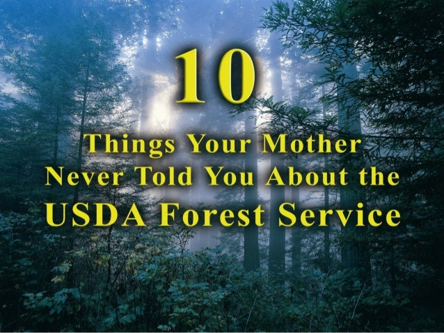 healthy balance                  The focus of the                  Forest Service is                  far broader than    ...