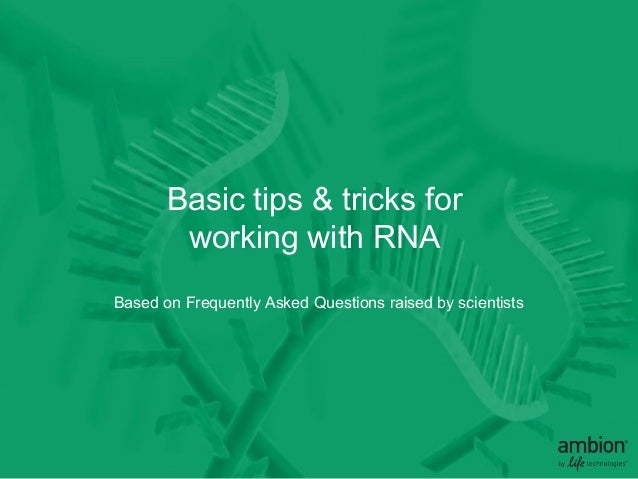 10 tips for working with RNA