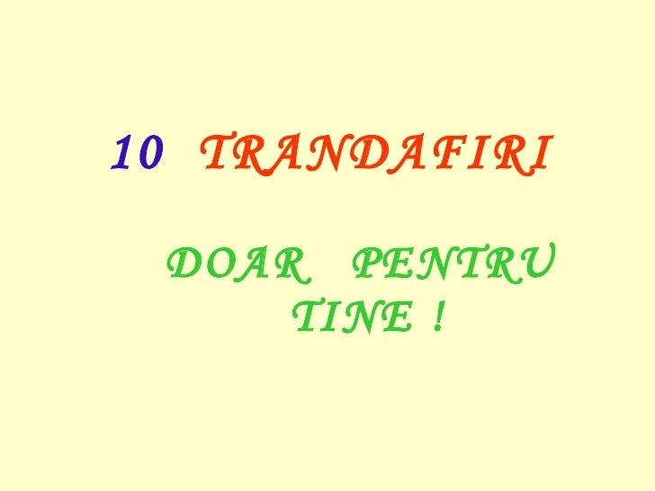 10  TRANDAFIRI  DOAR  PENTRU  TINE   !