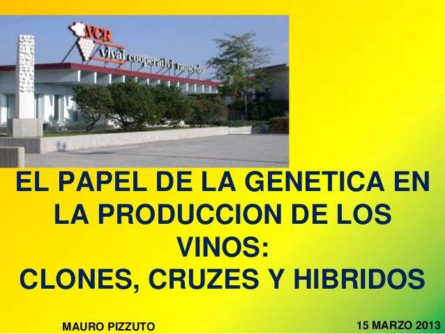 EL PAPEL DE LA GENETICA EN   LA PRODUCCION DE LOS          VINOS:CLONES, CRUZES Y HIBRIDOS  MAURO PIZZUTO      15 MARZO 2013