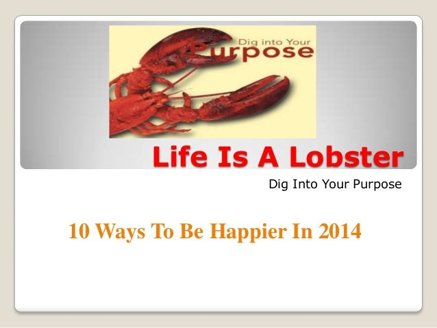 Life Is A Lobster Dig Into Your Purpose  10 Ways To Be Happier In 2014