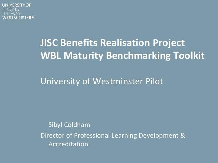 11 06-28 jisc-well wbl toolkit presentation uo w