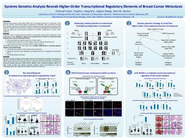 11.06.13 - 2013 NIH Research Festival Poster