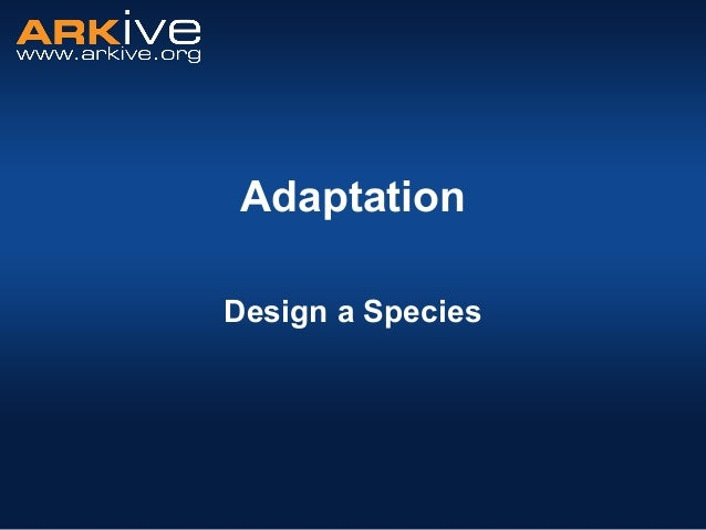 11 14yrs --adaptation_-_design_a_species_activity_-_classroom_presentation