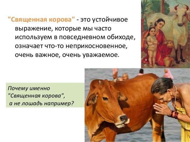 На Западе относятся к минским соглашениям, как к священной корове, хотя знают, что в конце не будет ни молока, ни мяса, - Чубаров - Цензор.НЕТ 5306