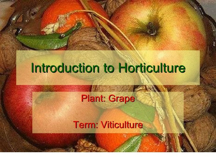 Introduction to Horticulture Plant: Grape Term: Viticulture