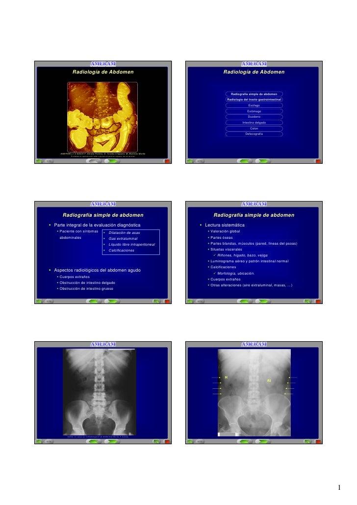 Aplicación Multimedia para la Enseñanza de Radiología a Alumnos de Medicina                                         Aplica...