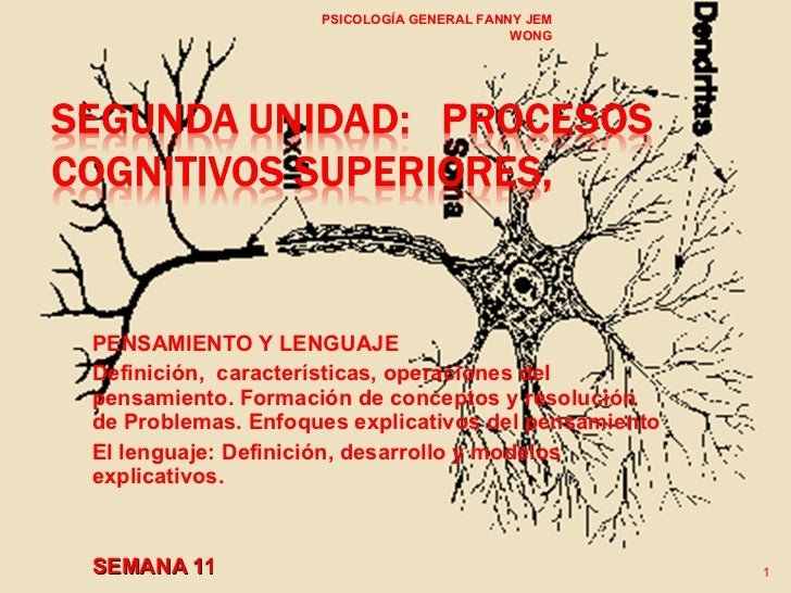 PENSAMIENTO Y LENGUAJE Definición,  características, operaciones del pensamiento. Formación de conceptos y resolución de P...