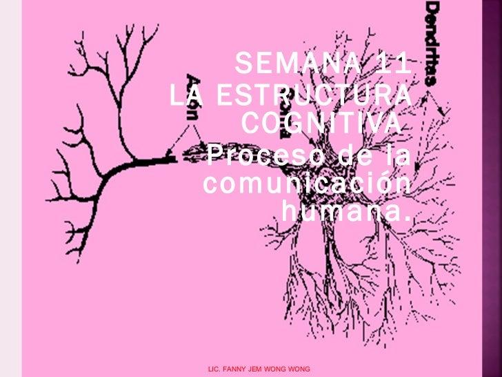 SEMANA 11 LA ESTRUCTURA COGNITIVA   Proceso de la comunicación humana. LIC. FANNY JEM WONG WONG