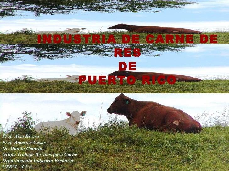 Calidad de la carne de res producida en Puerto Rico – Prof.  Américo Casas
